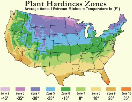 Plant Hardiness Zone Map - Map-of-us-planting-zones