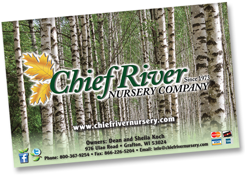 Chief River Nursery